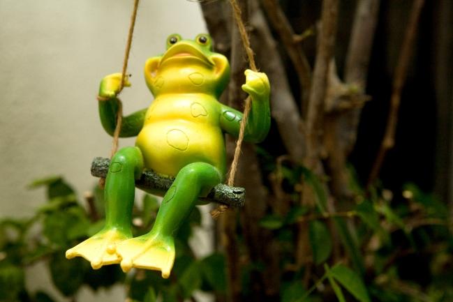malaysia_frogswinging.jpg